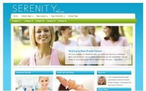 Eksempel på webside med banner fra Studiopress