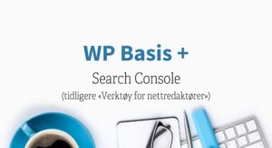 Search Console WP Basis pluss