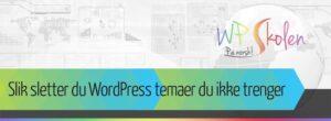 Hvordan du sletter WordPress temaer du ikke trenger
