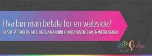 Hva koster det egentlig å få satt opp en webside? La oss se litt på timer og tall!