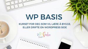 WP Basis - WordPress kurs