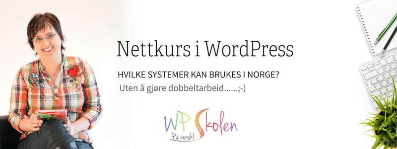 Nettkurs i WordPress - Hvilke alternativer finnes