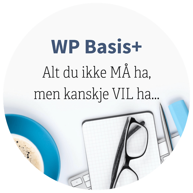 WordPress kurs på nett