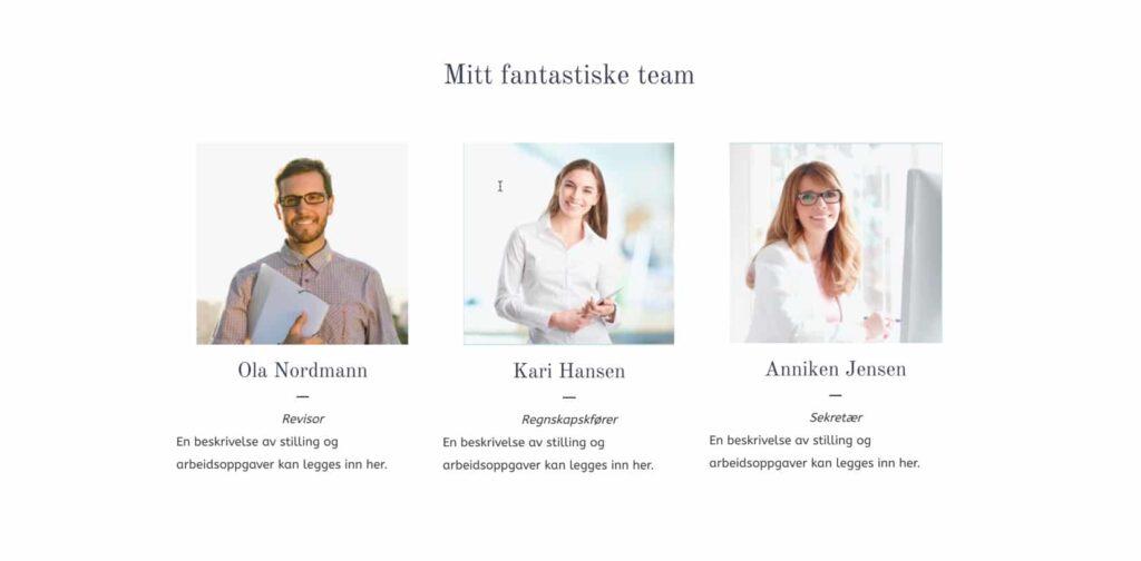 Regnskap – team