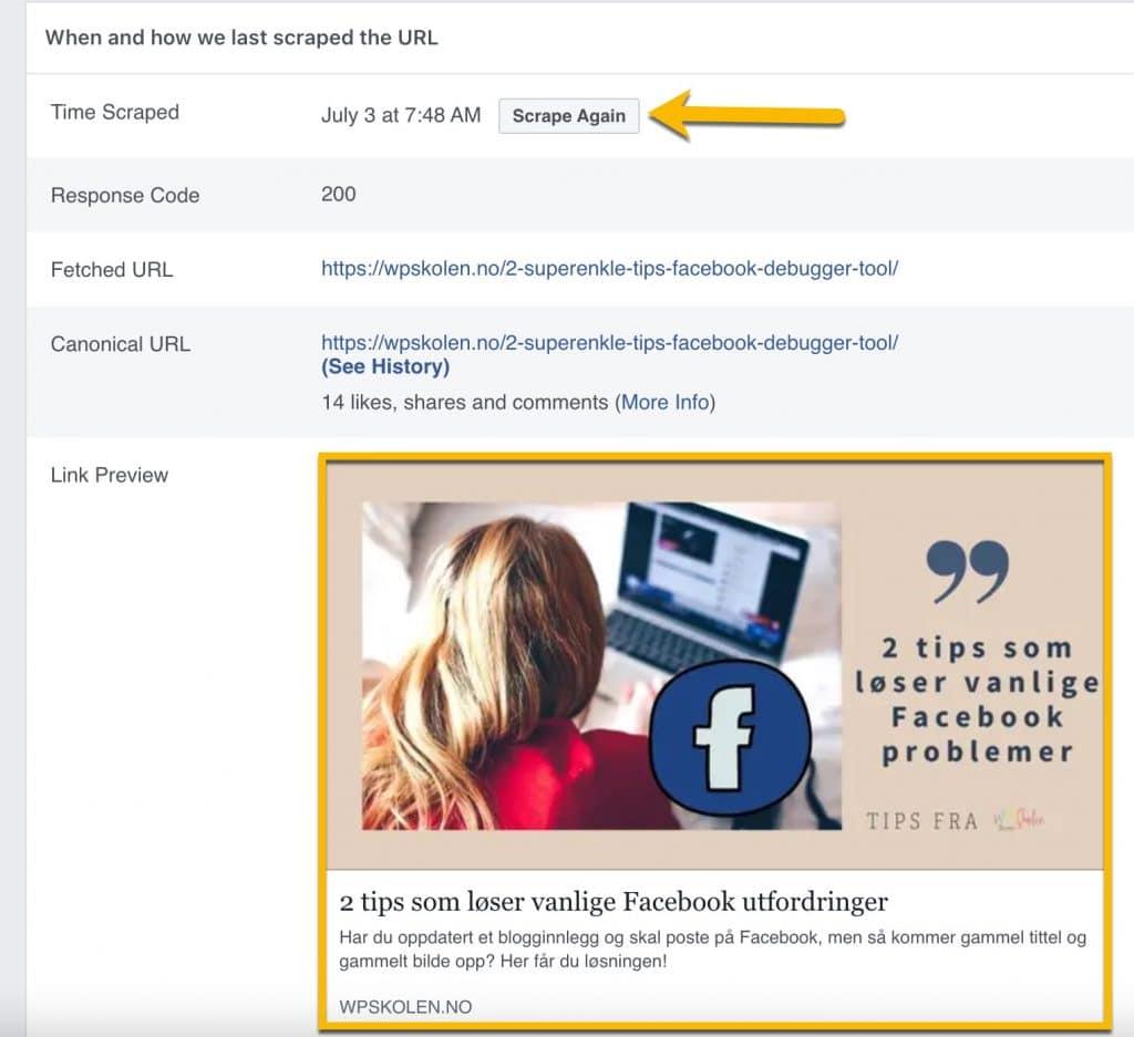 Her ser du hva Facebook sin debugger tool finner på siden din.