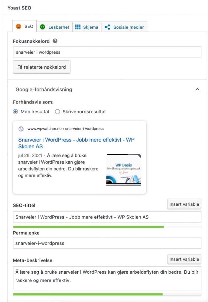 Her ser du innstilingene for SEO tittel og meta beskrivelse for søkemotorer.